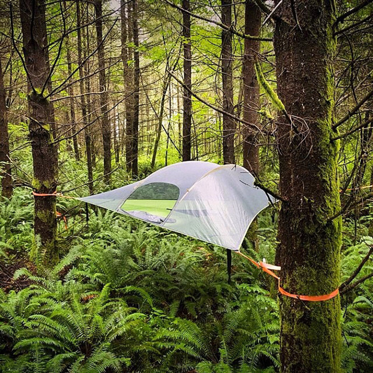 Share this & Review: Tentsile Stingray Tree Tent - 4WAAM