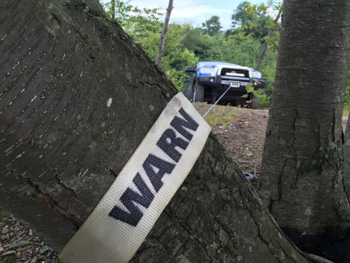 4waam-warn-epic-tree-trunk-protector