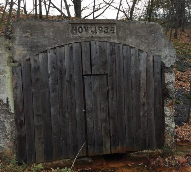 4waam-woodland-adventure-old-door